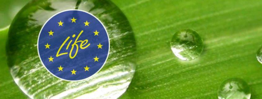 Ambiente Europa